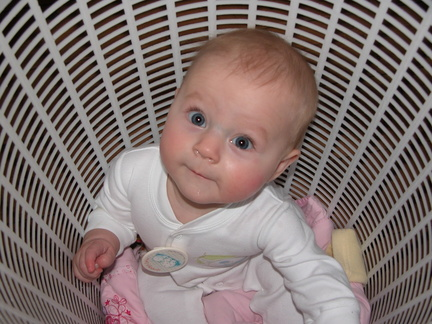 Mia sitting in a washing basket