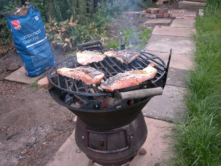 Barbecue. Mmmm, salmon