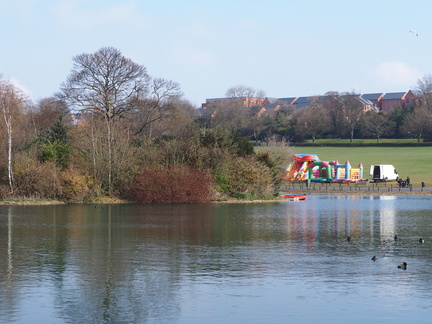 Island in Saltwell Park lake