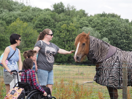 Julia, Mia, Fred, Sol, Kirsty and a horse pretending to be a zebra