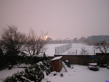 Heavy snow in the back garden